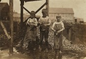 "Three cutters in Factory #7, Seacoast Canning Co. On the right is Grayson Forsythe, 7 years old. Middle is George Goodell, 9 years old, finger badly cut and wrapped up. Said, ""the salt gets unto the cut."" Left, Clarence Goodell, 6 years. (L.H.)"